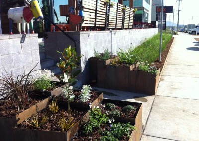 Welcoming metal planter boxes in Fyshwick