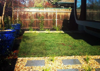 A small landscaped garden in Curtin