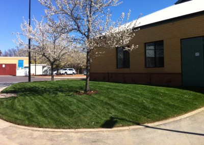 Retirement home landscaping Canberra