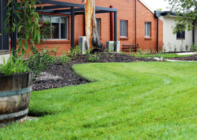 Lawn and planting