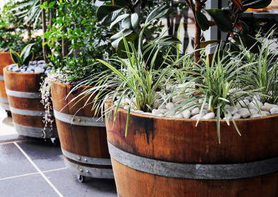 Wine barrels create moveable gardens